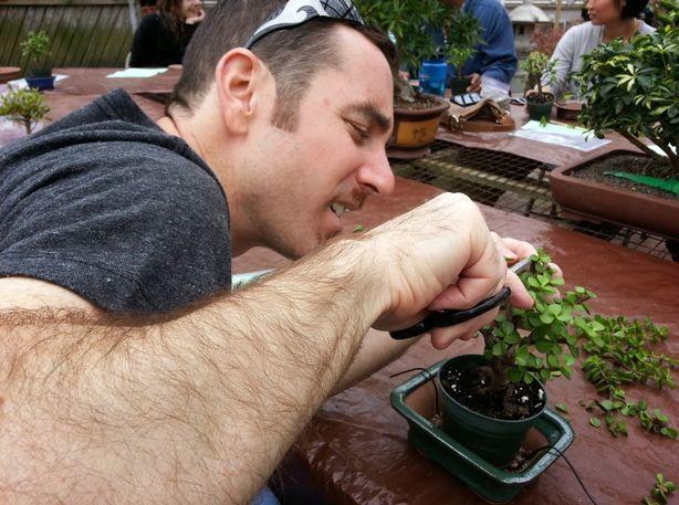 Pin On Youtube For Kim S Gardens The Hypertufa Gardener