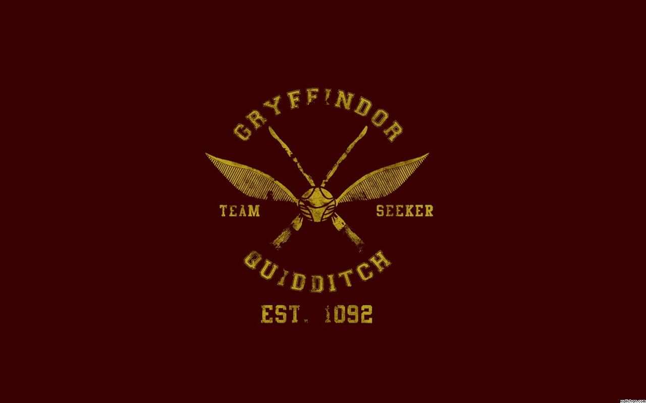 Gryffindor Quidditch Team Harry Potter Wallpaper Harry Potter