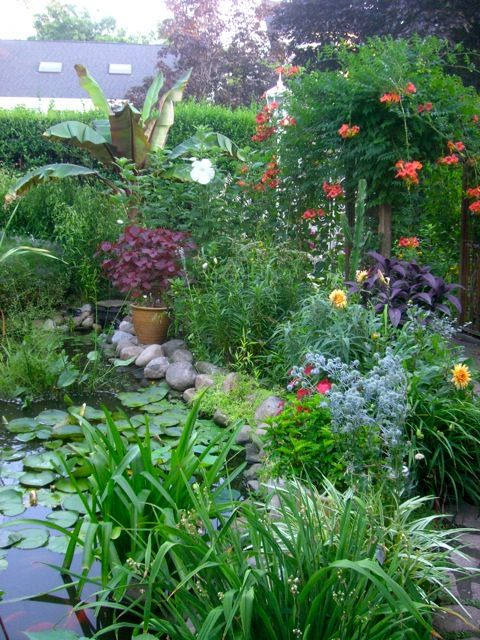 Artofgardening Org A Tropical Garden In Zone 5