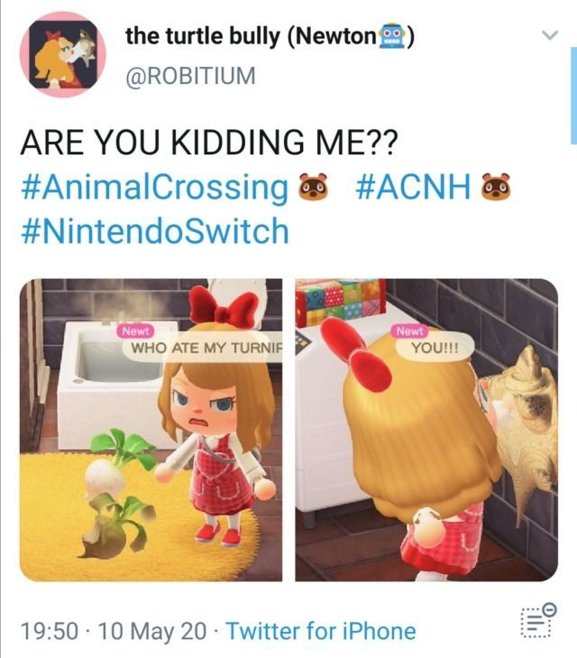 10 Best Nintendo Switch Accessories For 2020 Animal Crossing Funny Animal Crossing Game Animal Crossing Memes