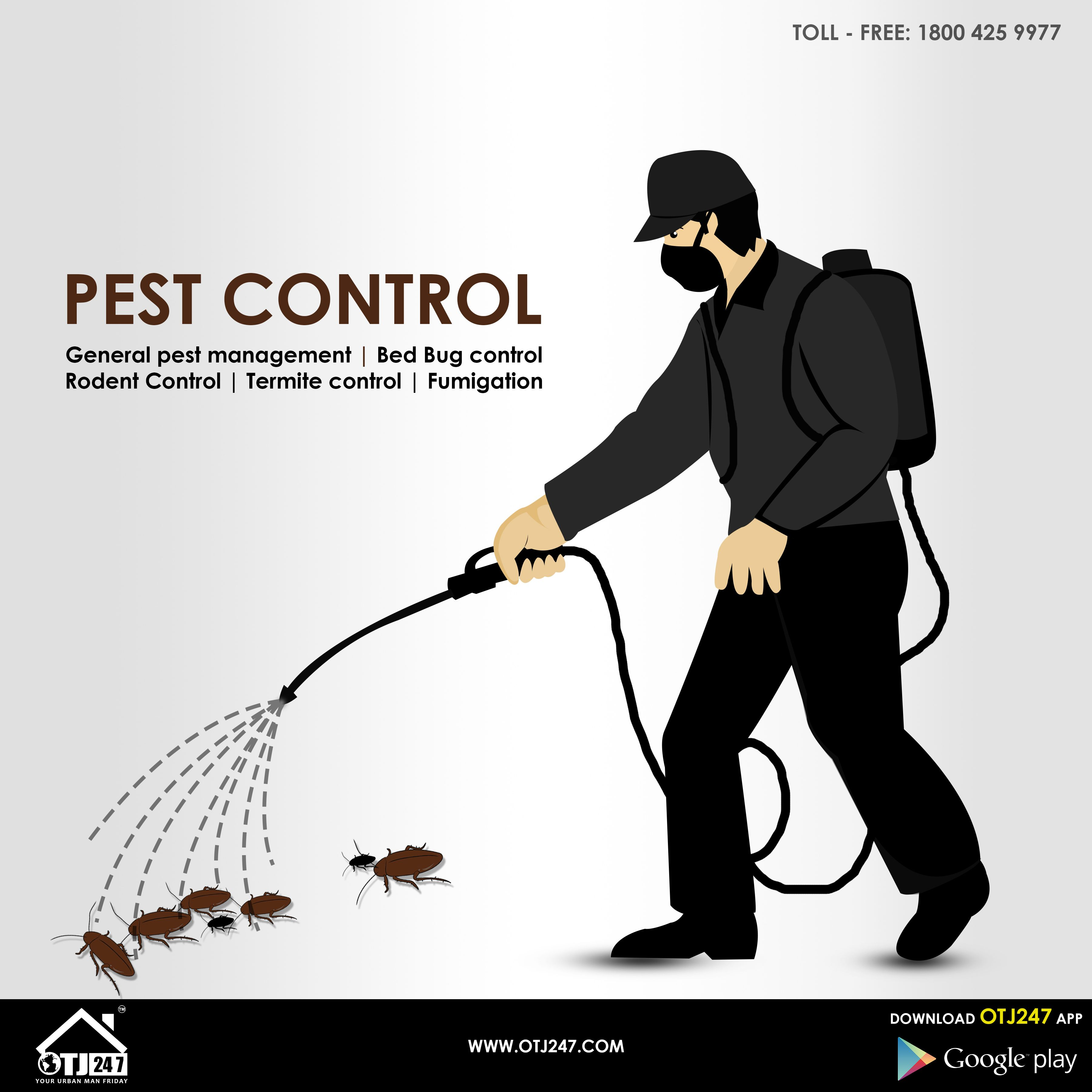 Pest Control Services In Bangalore. Commercial Office
