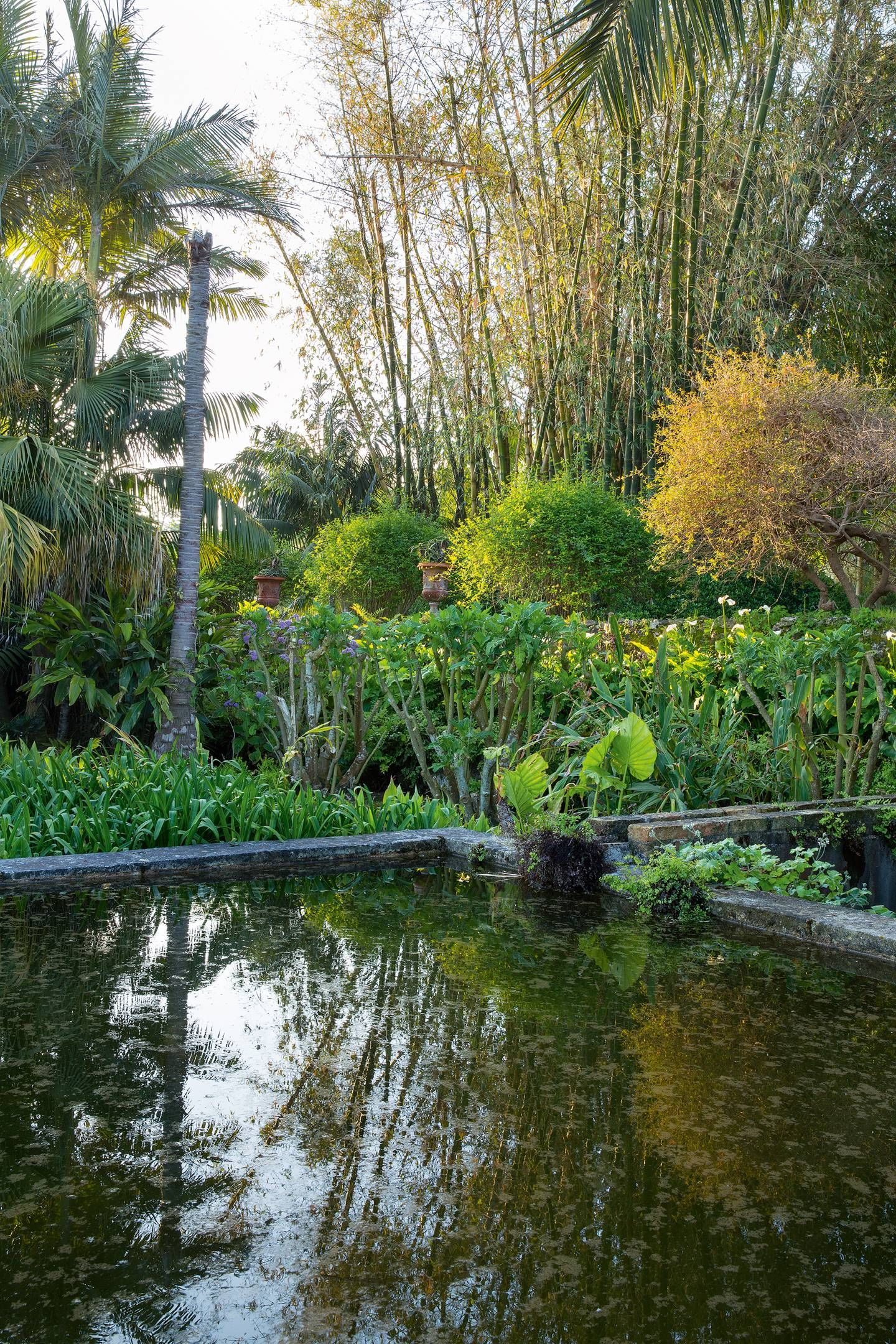 Landscape of house garden  The yearold estate of a Sicilian marquis with evolving displays