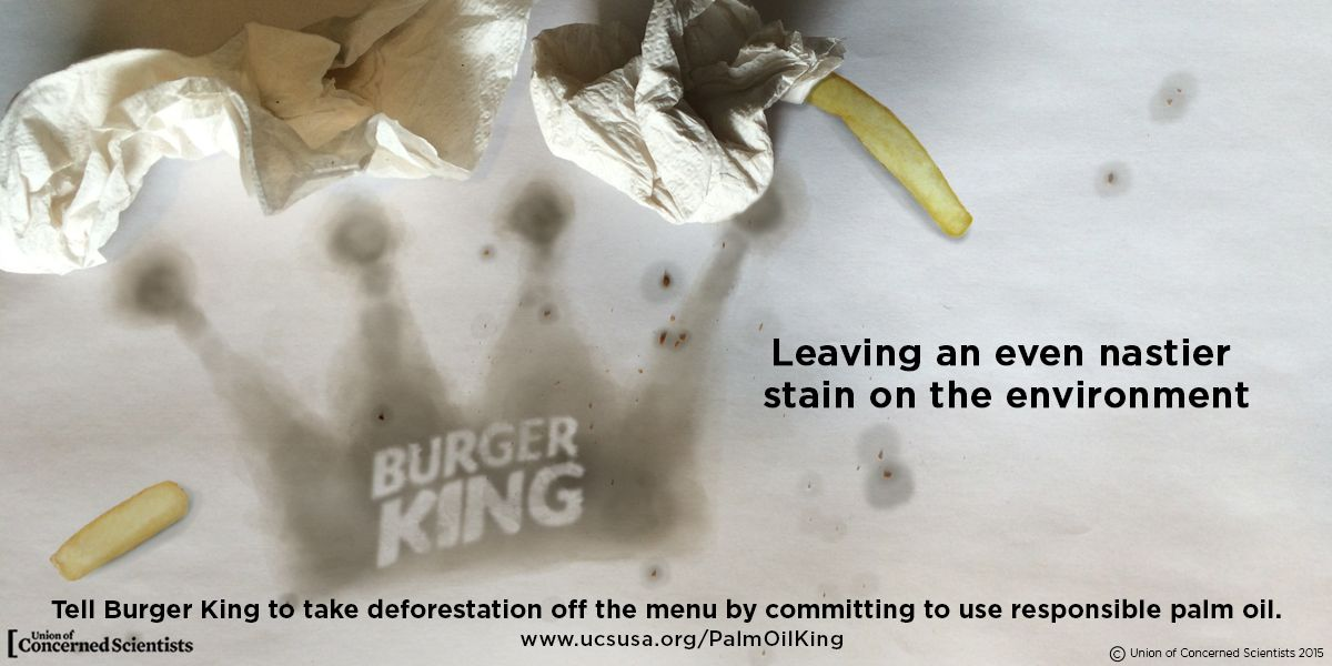 Burger King: Stain on the environment