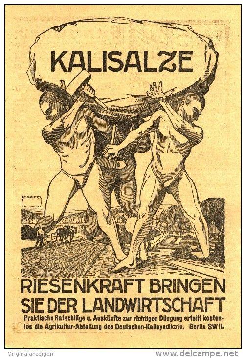 Original-Werbung/ Anzeige 1923 - 1/1 - Seite: KALISALZE - ca. 150 X 220 mm