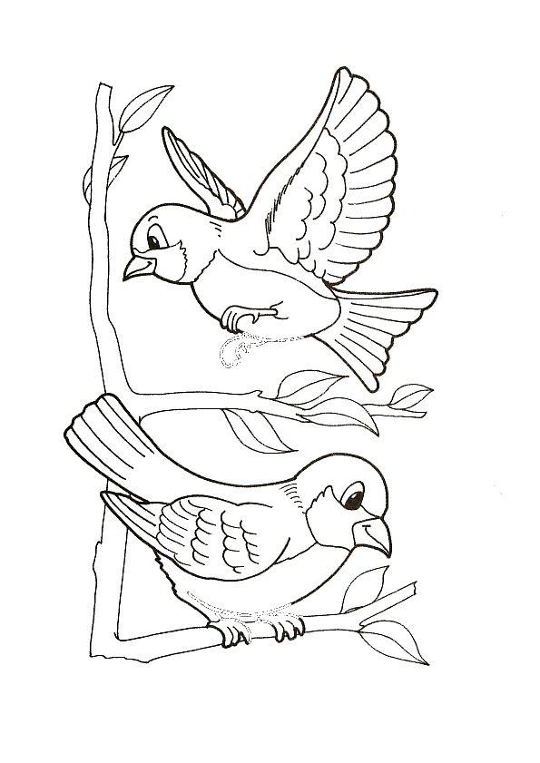 kleurplaten vogeltjes in de winter