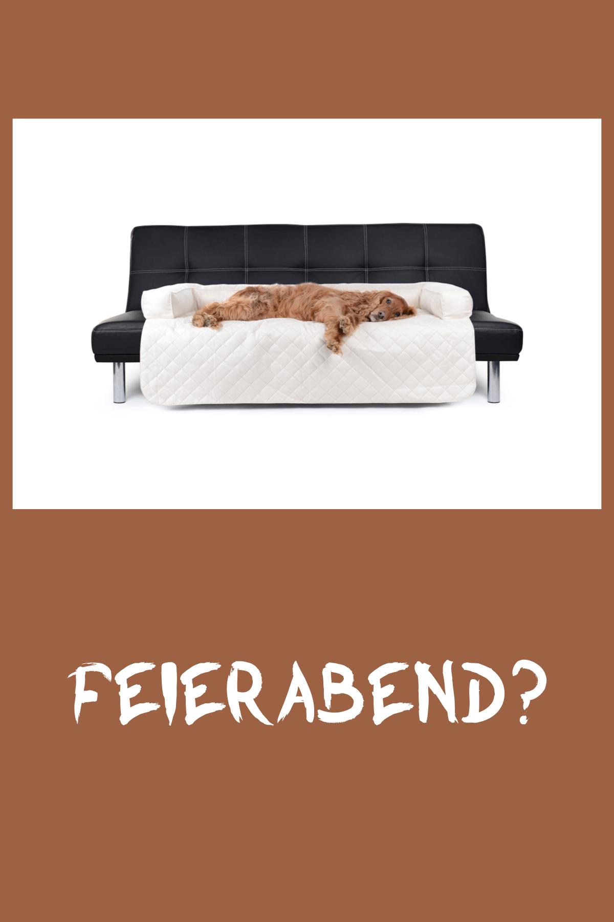 Hunde Sofaschutz Decke Dakota Wildlederimitat 100x100 Cm Creme Sofaschutz Hunde Couch Decke
