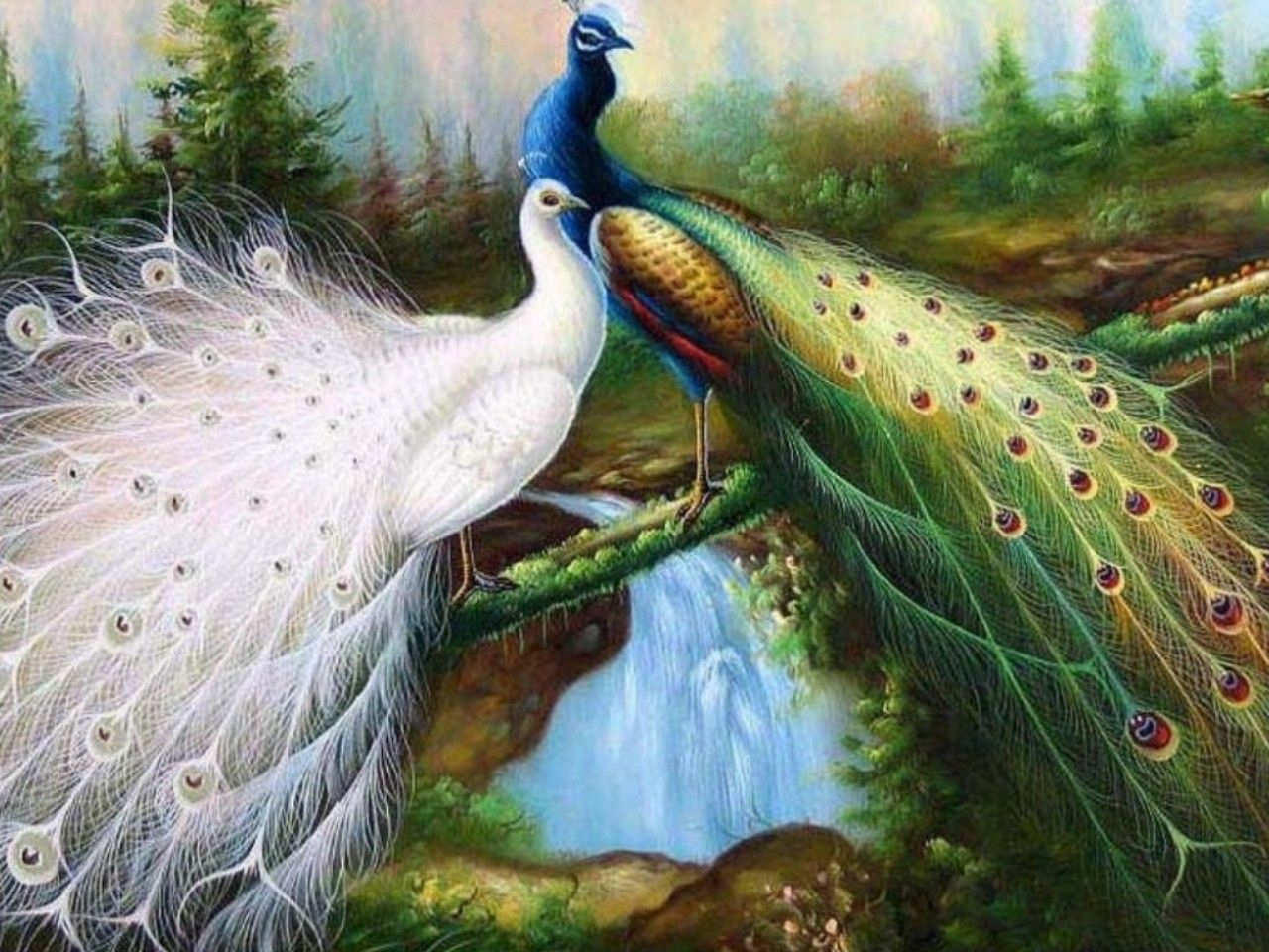 Best Peacock Painting Wallpapers HD Pavo real
