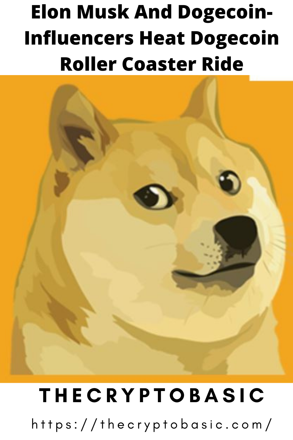 How Much Is 100 Dogecoin Worth - GODECI