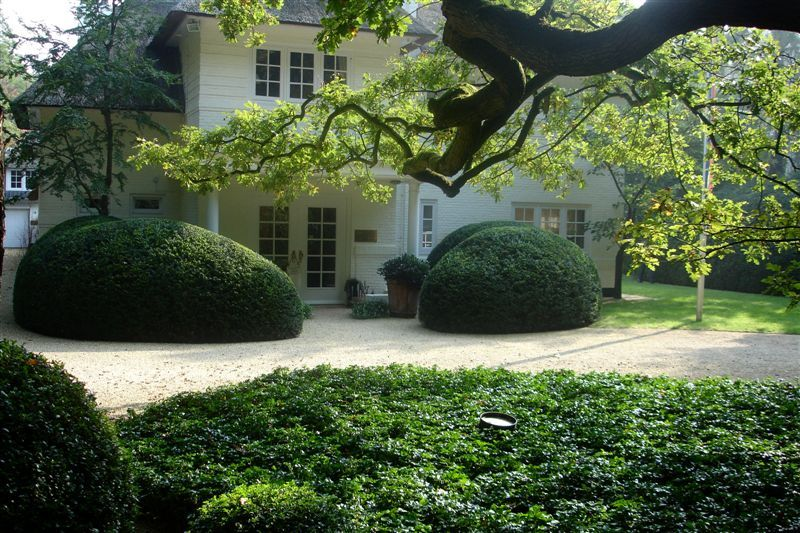 Tuinarchitect meker tuinen: moderne tuinarchitectuur als basis van
