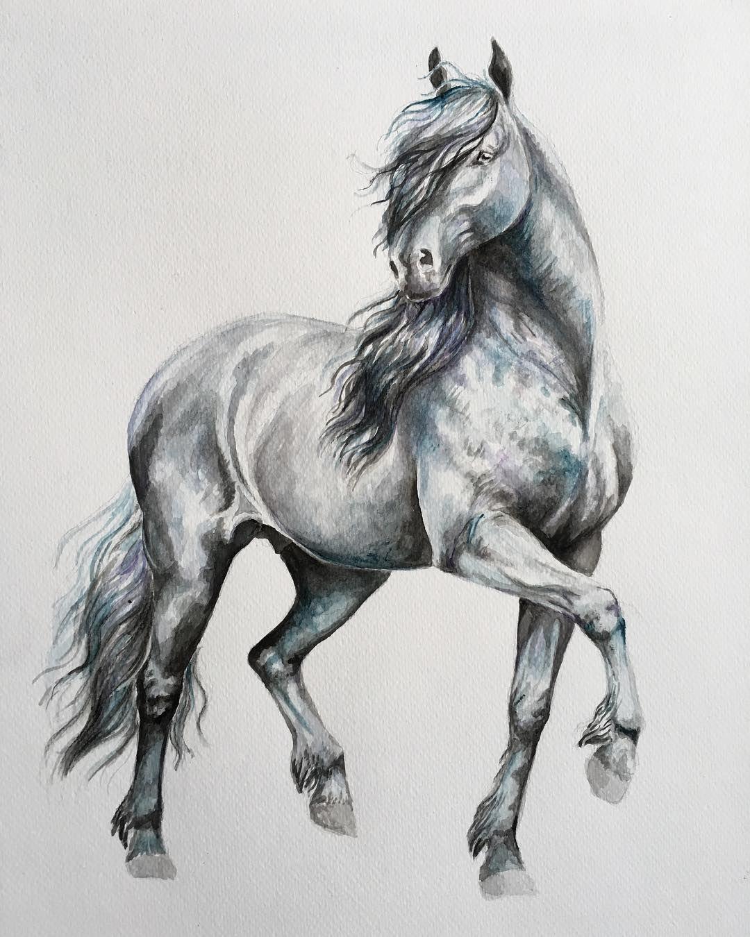 фото коня графика идеально