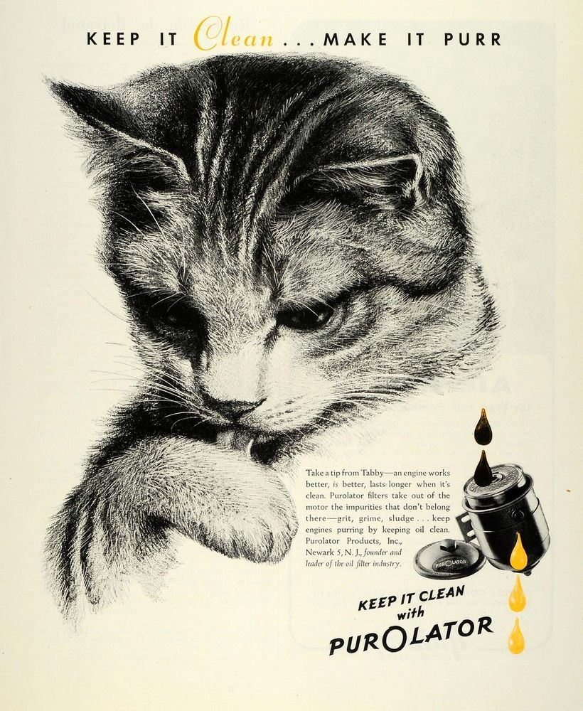 Keywords Specific To This Image Vintage Advertising Tabby Cat Car Parts This Vintage Poster Art Tabby Kitten Vintage Advertisements