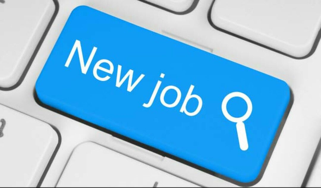 Corporate Staffing Job Vacancy Chief Technology Officer Online Jobs For Students Student Jobs Online Jobs