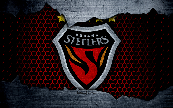 Image result for pohang steelers
