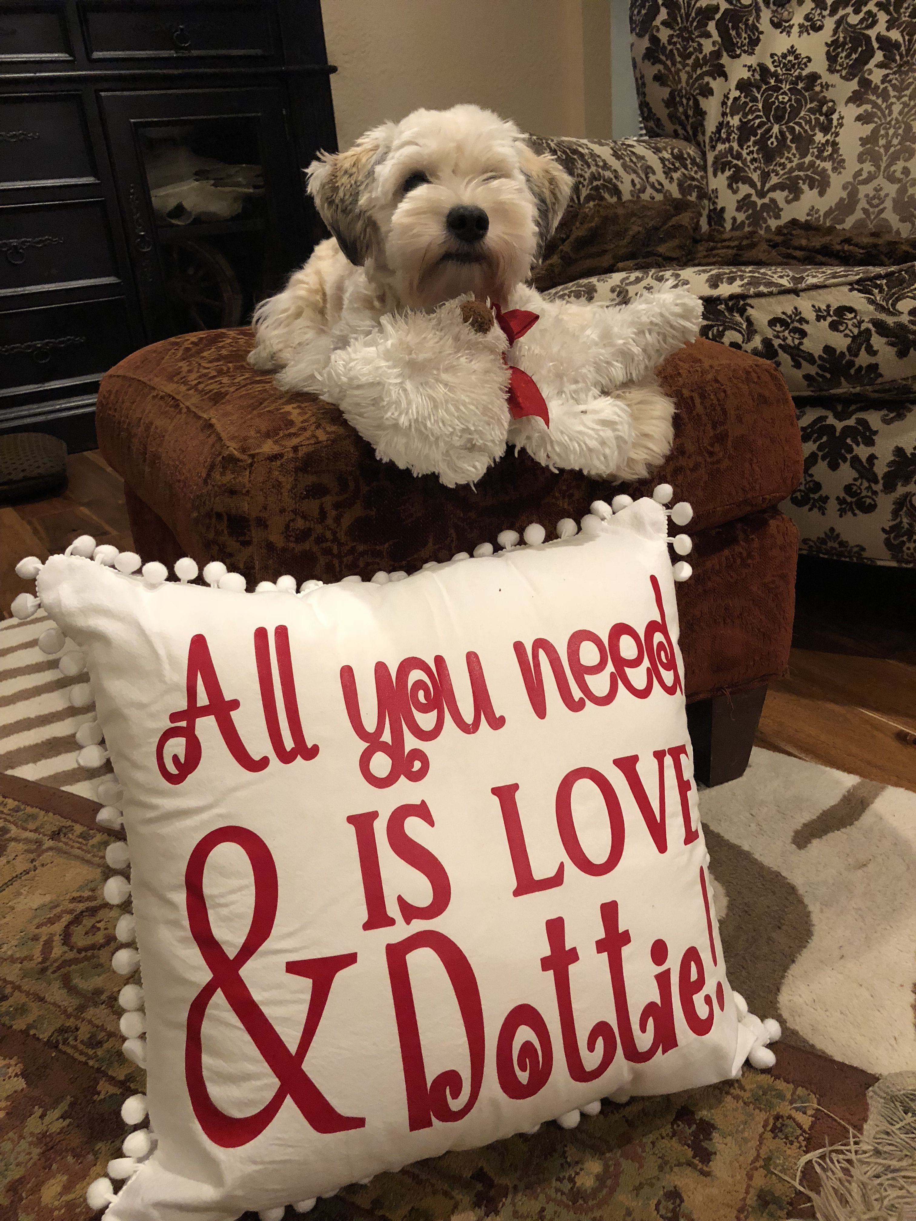 All You Need Is Love And Dottie Personalized Dog Pillow Dog