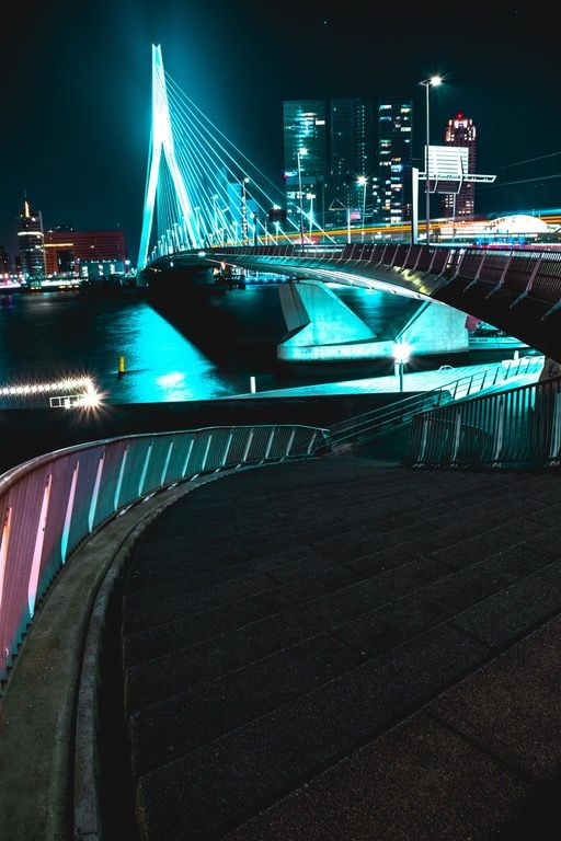 The Erasmus Bridge in Rotterdam [xpost from /r