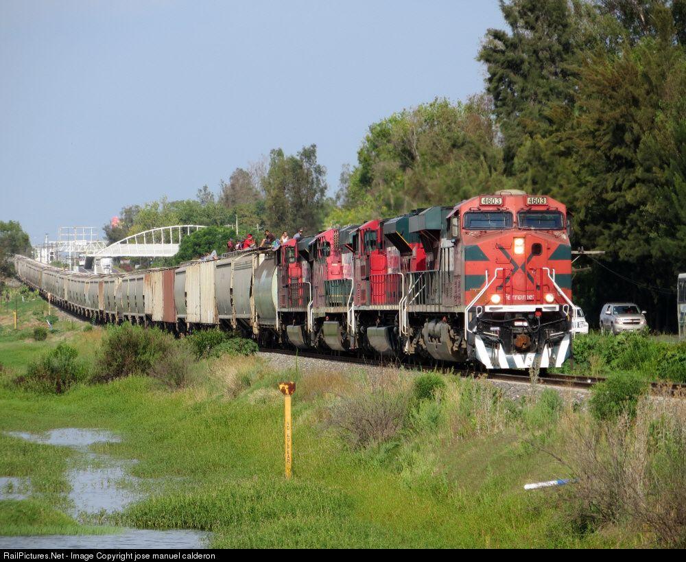 12 ideas de Trenes mexicanos | tren, tren de pasajeros, el chepe