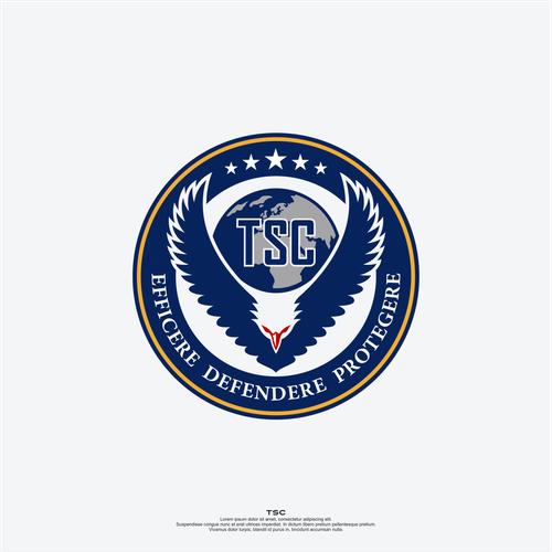 TSC - Military OP needs logo help!