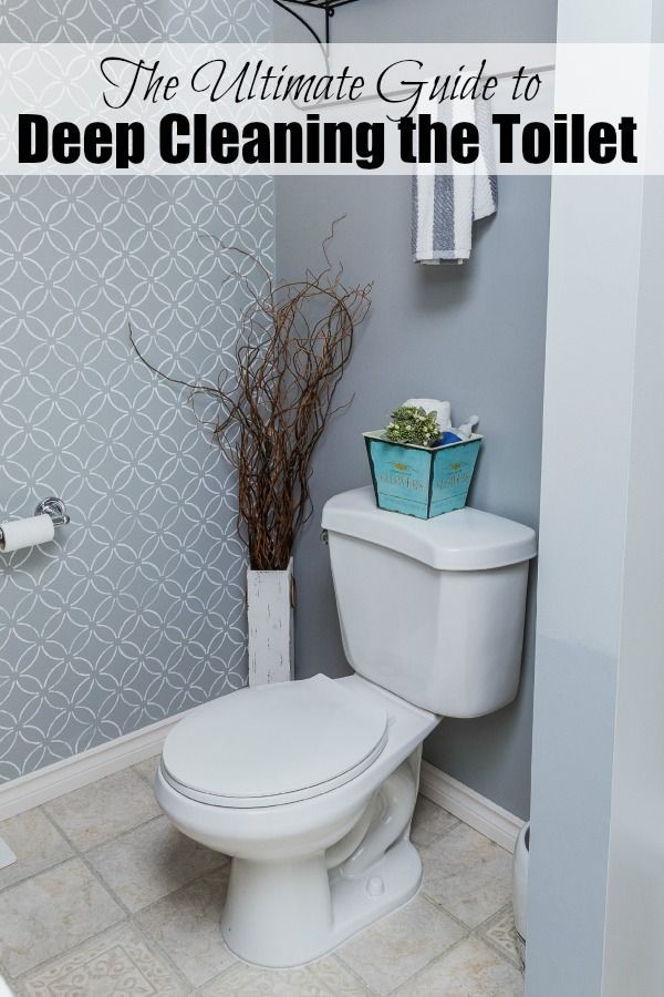 Awesome tips to REALLY get your toilet cleaned and disinfected!  // http://cleanandscentsible.com