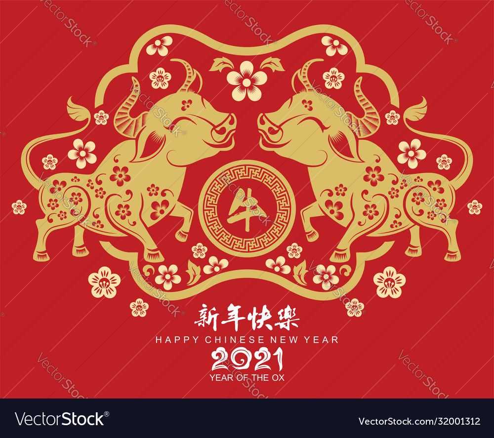 Chinese new year 2021 year ox vector image on VectorStock
