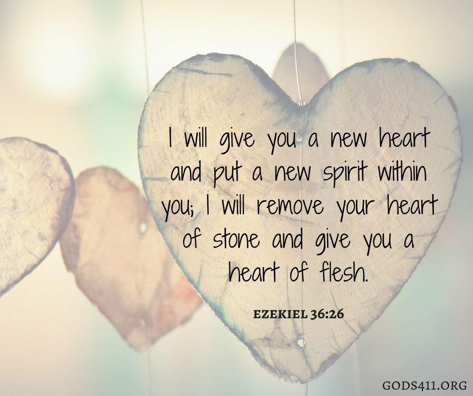 Bible Quotes Heart: Ezekiel 36:26