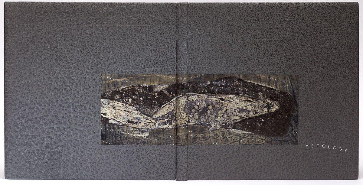 Cetology En systematisk udstilling af hvalen i hans-5549