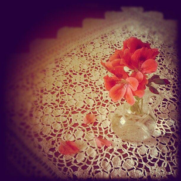 vasenblümchen #flower #pink