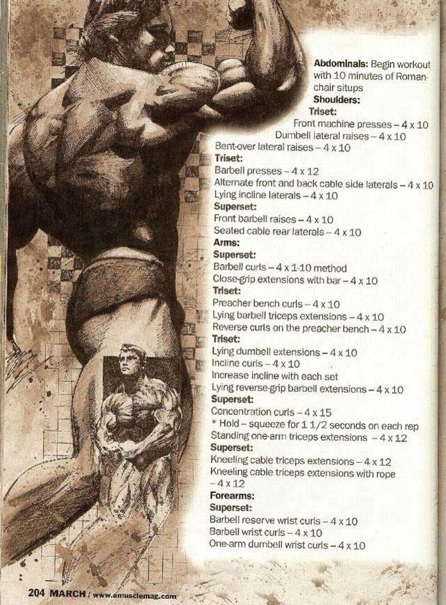 Arnold Schwarzenegger Olympia Training Secrets of the Oak ...