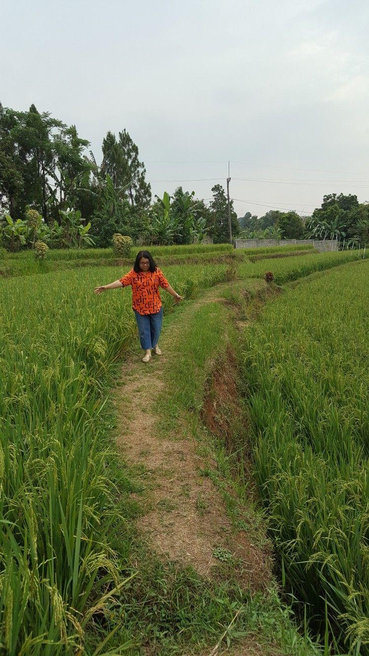 Pin Di Bukit Air Resto Bogor