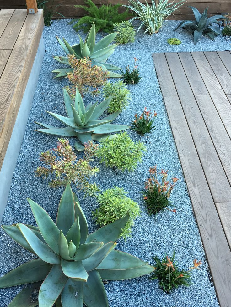 10 schöne Yeriscape Yards - #landscape # beautiful #Yards #Yeriscape #plantingsucculents