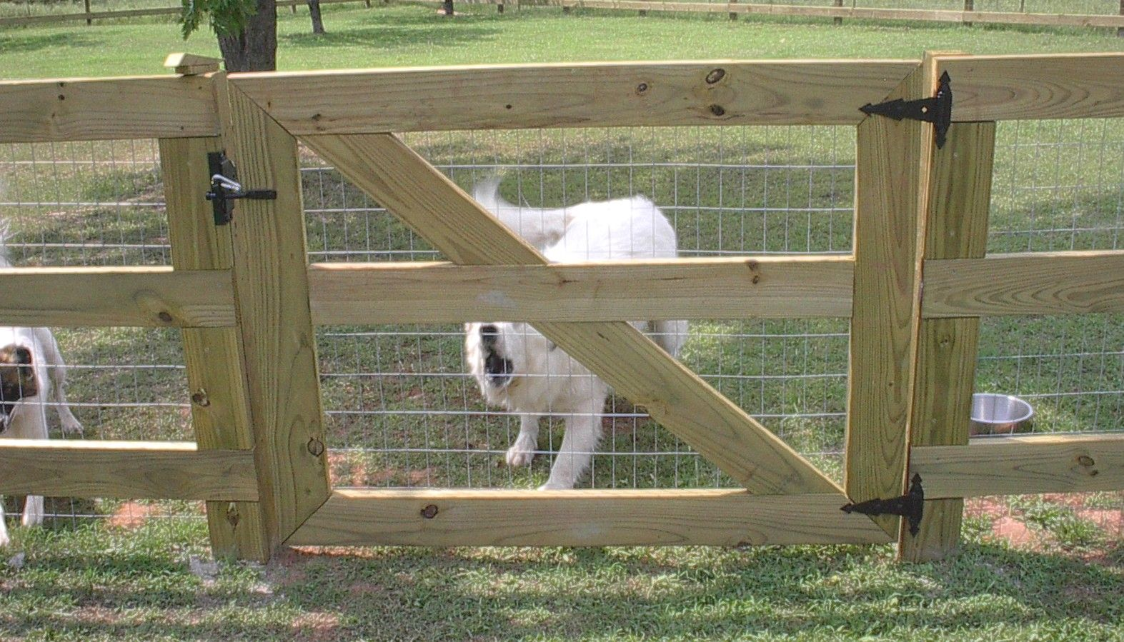Please Excuse The Scary Dog We Love This Barn Style Fence And Diy