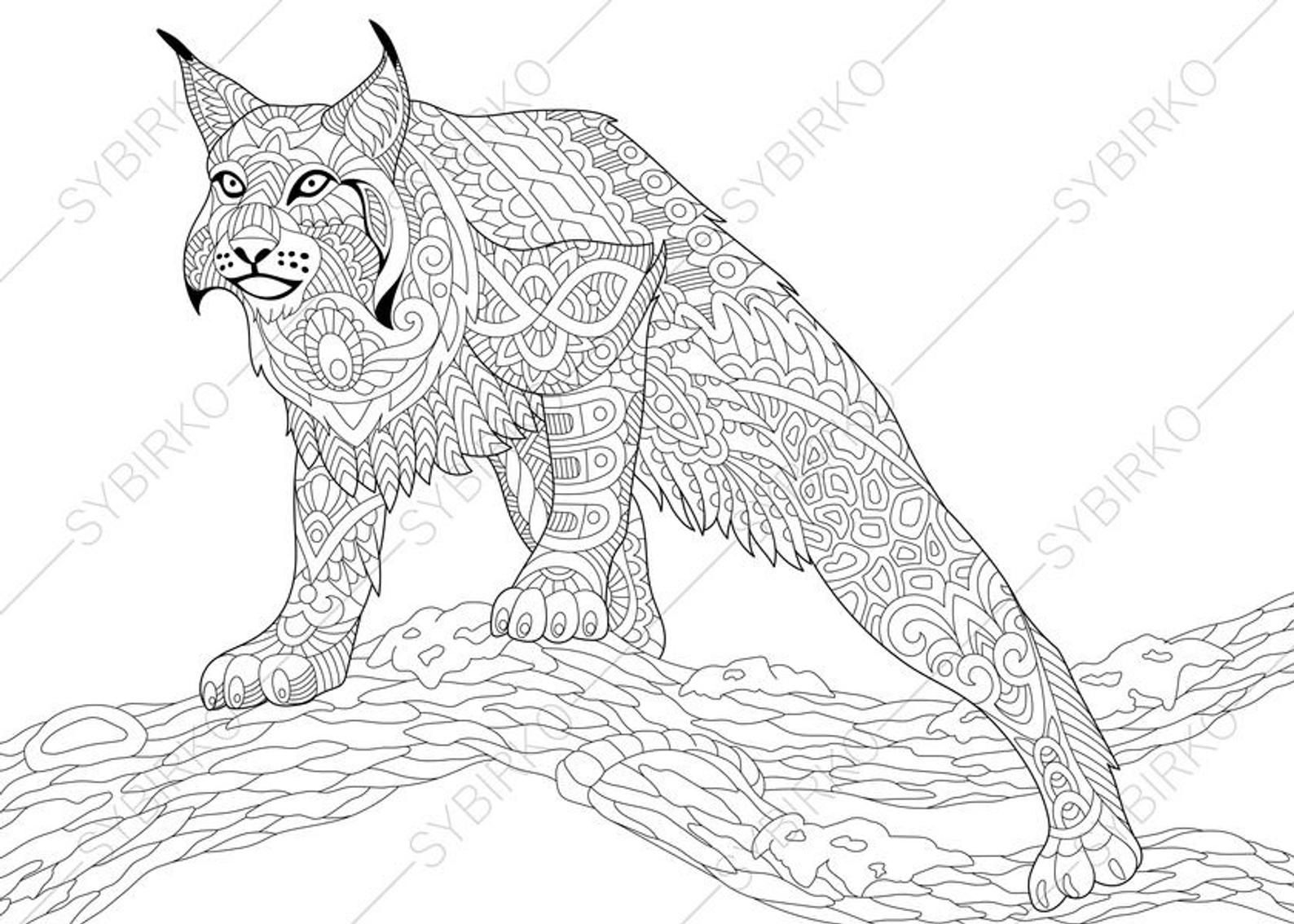 Coloring Pages For Adults Wildcat Lynx Bobcat Caracal Etsy