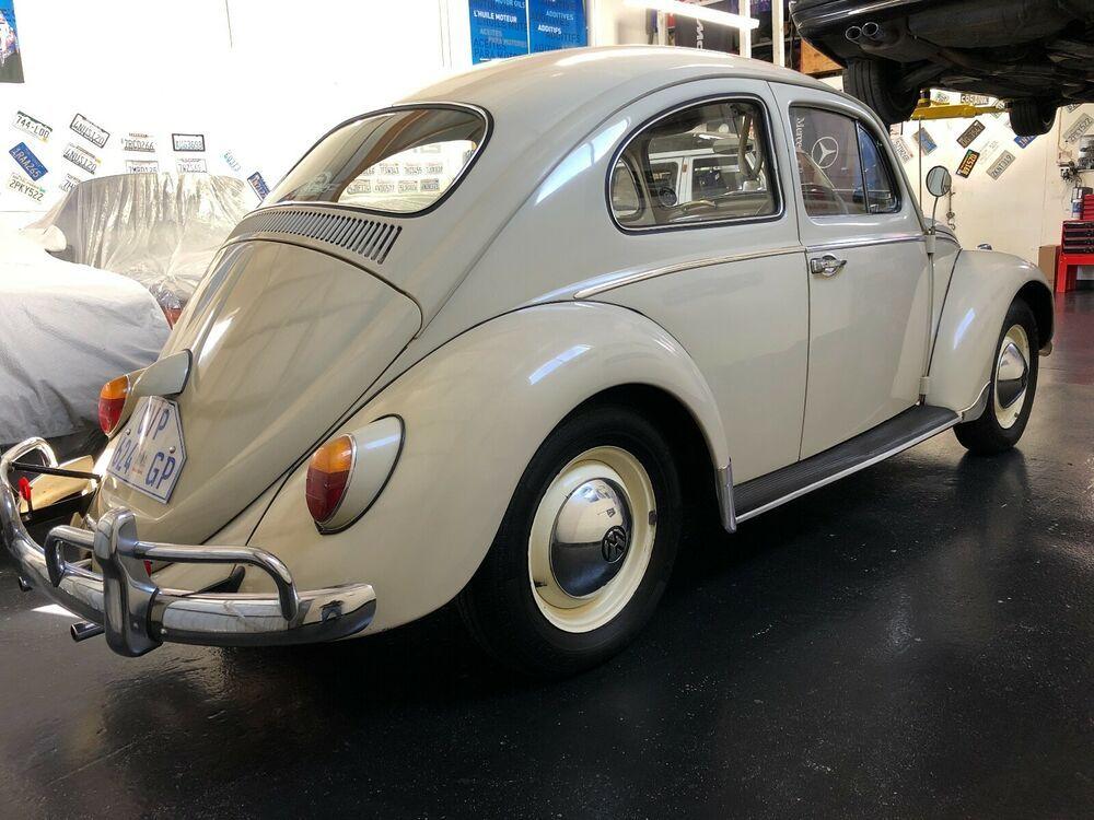 1962 Volkswagen Beetle Classic Uper Rare 1962 Vw Beetle Right Hand Drive Volkswagen Beetle Volkswagen Vw Beetles