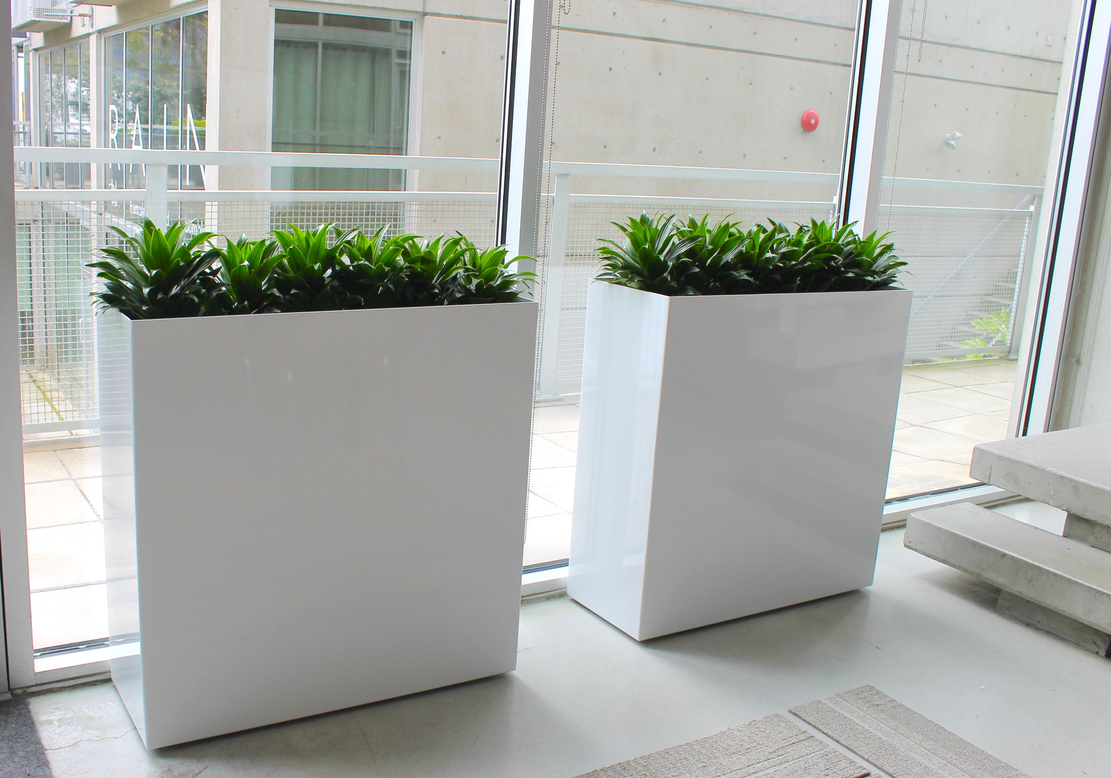 Gloss White Modern Planters Fully Equipped With Ollie Plant Sipper And Ez Fill Ter Bags A Total System