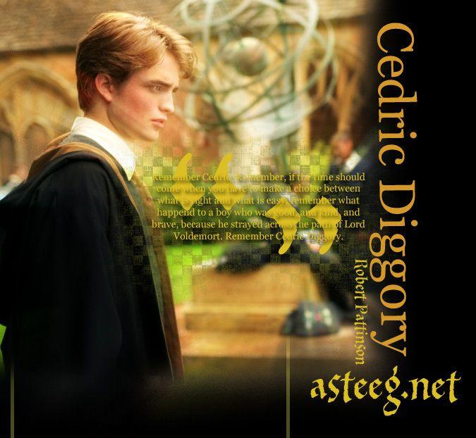 Cedric Diggory Photo Cedric Diggory Cedric Diggory Harry Potter Goblet Harry Potter Film