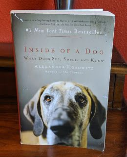 Reviews with TLC Inside of a Dog What Dogs See, Smell