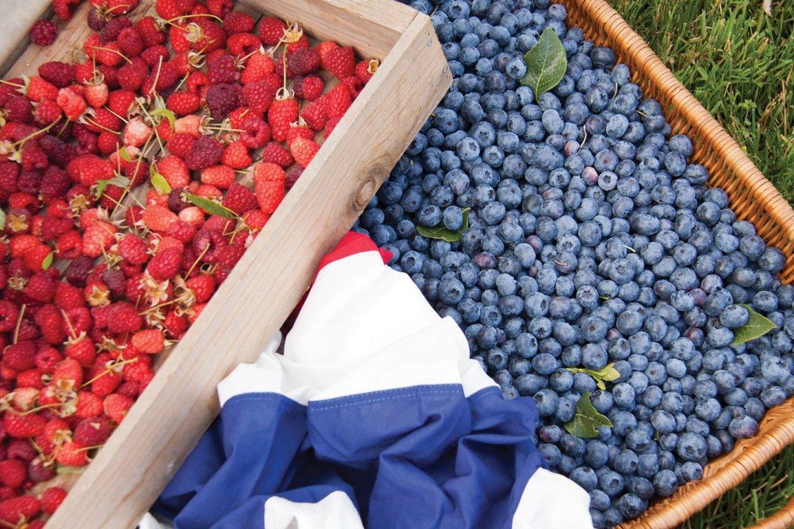 P Allen Smith Berry Good Fun Summertime Edibles Ay Magazine Growing Blueberries Growing Raspberries Edible Garden
