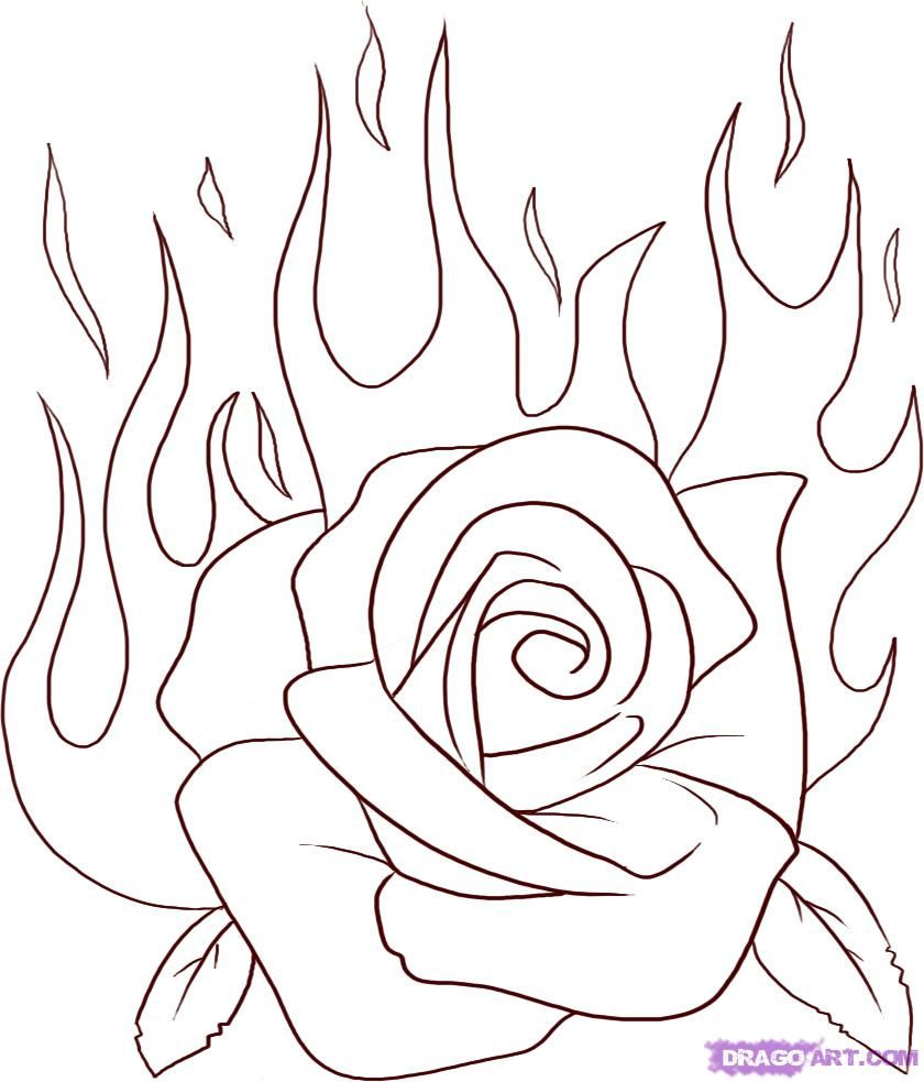 How To Draw A Flaming Rose By Dawn With Images Roses Drawing
