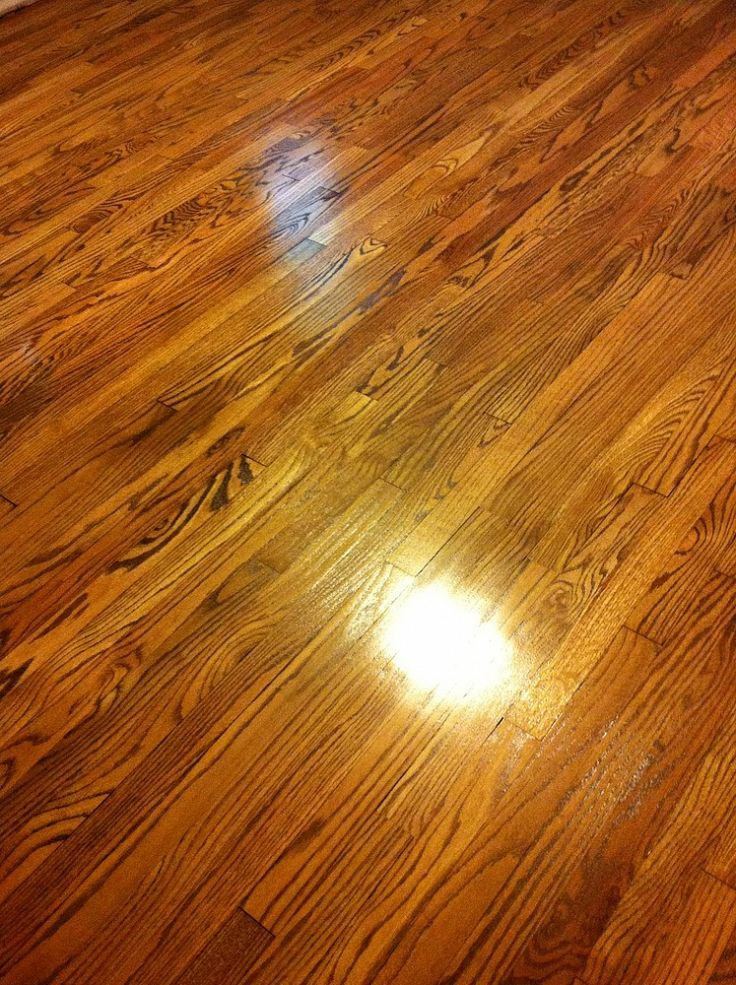 Review Mr Sandless Refinish Wood Floors Staining Wood Refinishing Floors