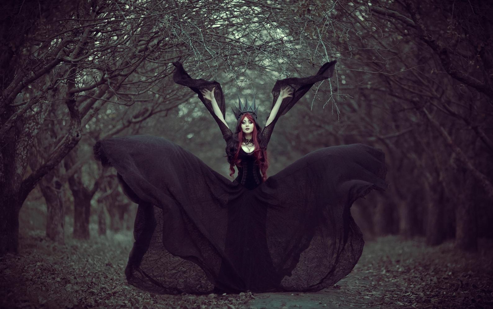 Black Lace Gown Gothic Wedding Dress Sheer Dress With Velvet Corset Vampire Dress Halloween Costume In 2021 Black Queen Fantasy Photography Dark Queen [ 997 x 1588 Pixel ]