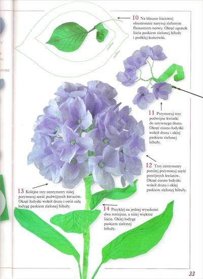 Kwiaty Z Bibuly Bibula Halszka64 Chomikuj Pl Strona 2 Plants