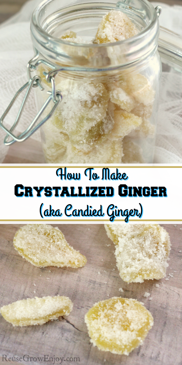 How To Make Crystallized Ginger Aka Candied Ginger Ginger Candy Recipe Crystalized Ginger Recipe Candied Ginger