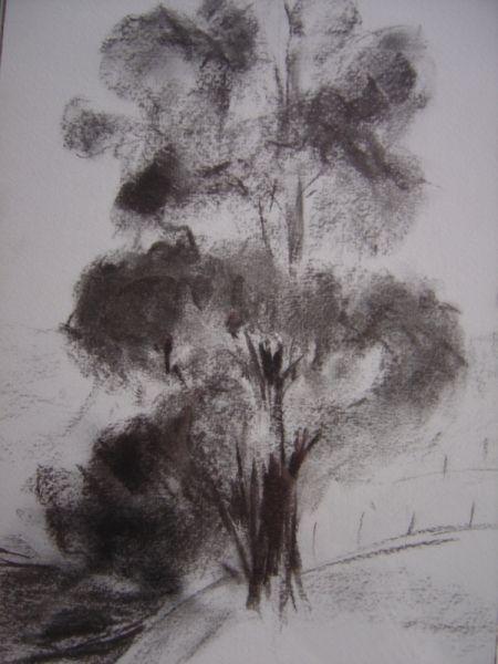 Dessin arbre campagne paysages fusain mon arbre peinture en 2018 pinterest - Arbres dessins ...