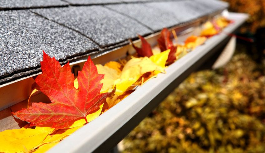 Cleaning your gutters twice a year (spring and fall) can protect your home by preventing sagging, clogged, and bent gutters. Before you climb up the ladder, prepare yourself to safely clean your gutter.  #hometips #lehighvalley #newhomes #homebuilder #guttercleaning