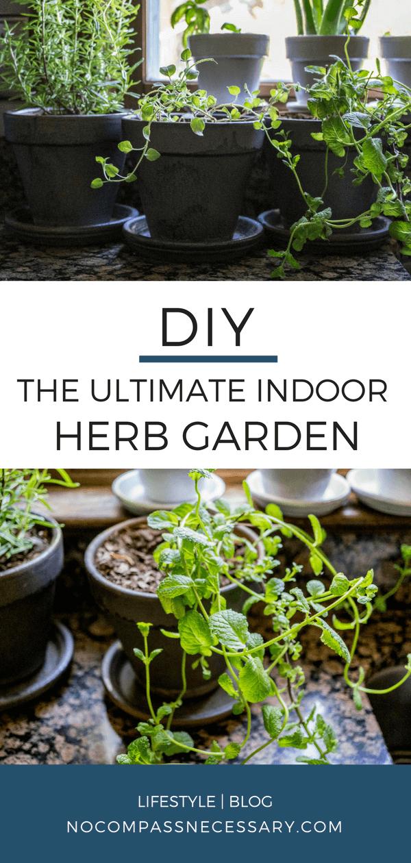 Indoor Herb Gardening for Beginners (With images) Diy