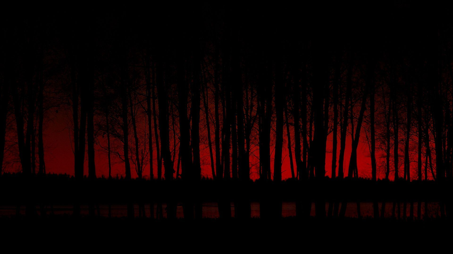 Changed Up For Adoption Dark Red Wallpaper Forest Wallpaper Dark Wallpaper