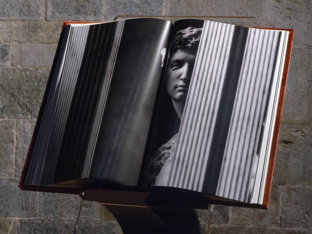 Michelangelo La dotta mano | Unique Books | FMR