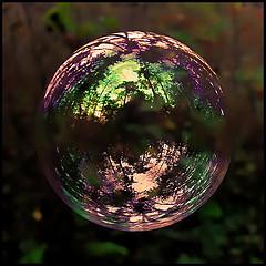 Helyn's Insight: South Sea Bubble