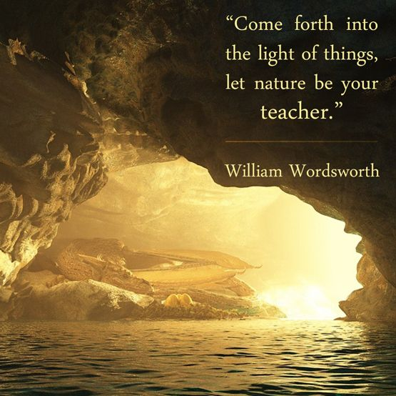 Best Nature Quotes: Image Result For Nature The Teacher