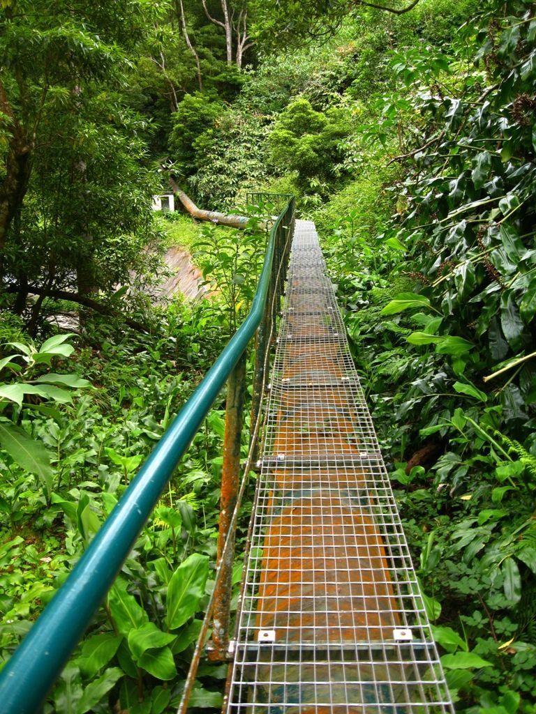 Trilho Salto do Cabrito - S. Miguel - Azores   Azores By Me ...