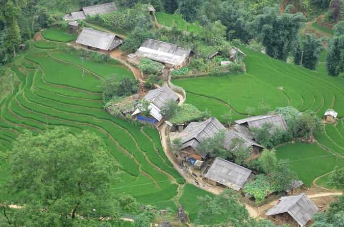 Muong Hoa Valley Day Tour from Sapa Meet Black H\u0027mong, Giay, and Red